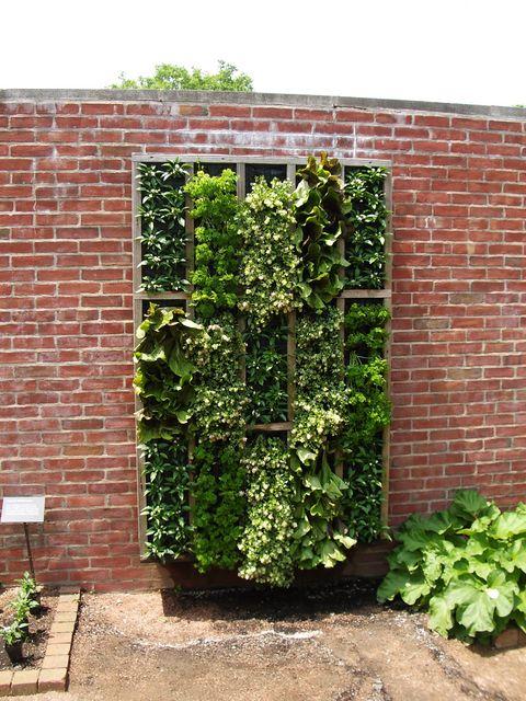Endnu en måde at lave en vertikal have på