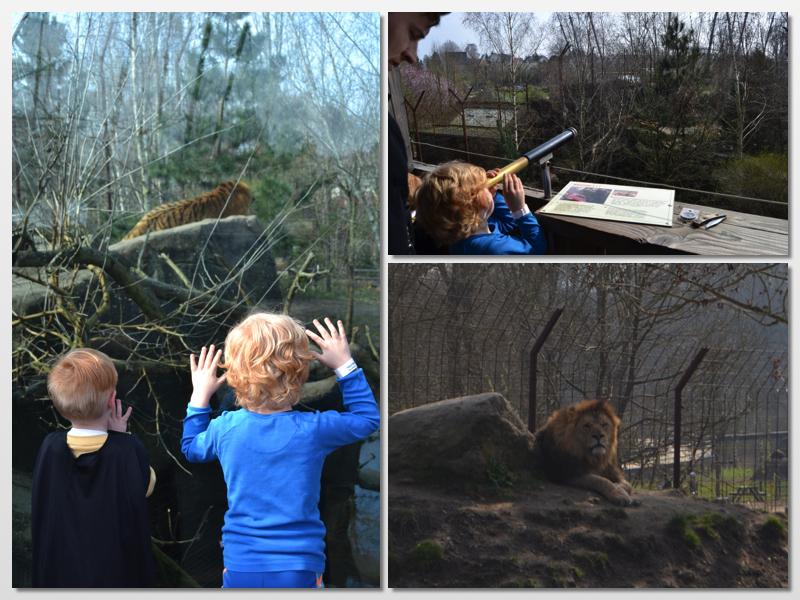 lægehuset padborg årskort til ålborg zoo